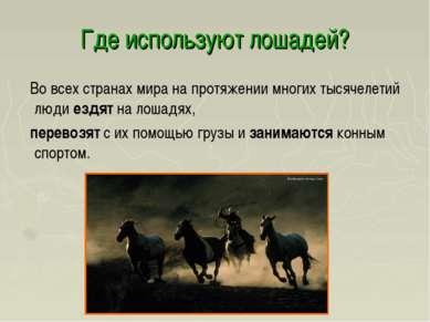 Где используют лошадей? Во всех странах мира на протяжении многих тысячелетий...
