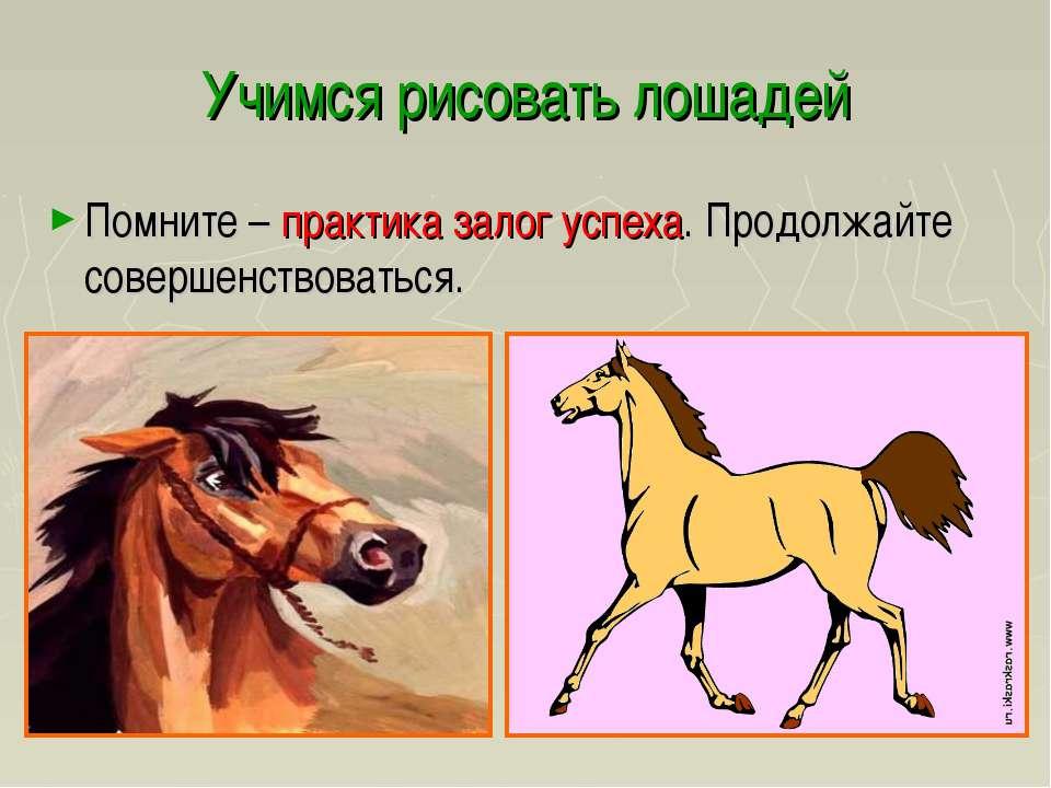 Учимся рисовать лошадей Помните – практика залог успеха. Продолжайте совершен...