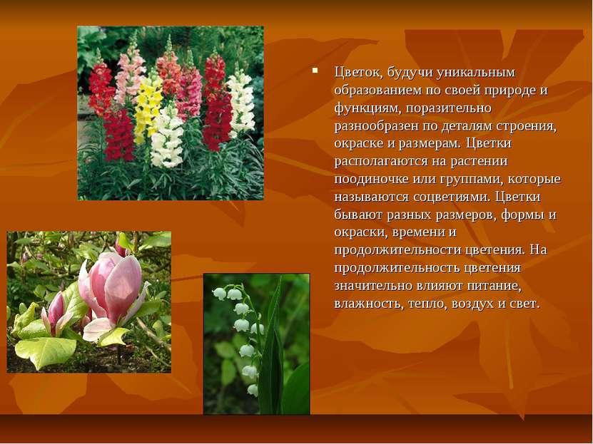 Цветок, будучи уникальным образованием по своей природе и функциям, поразител...
