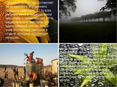 Сельское хозяйство составляет 34 % валового внутреннего продукта Бразилии, 37...