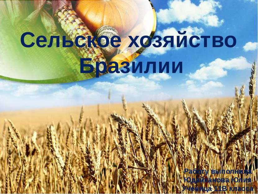 Сельское хозяйство Бразилии Работу выполнила Юдайханова Юлия Ученица 11В класса