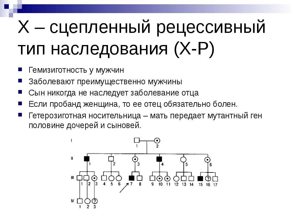 Х – сцепленный рецессивный тип наследования (Х-Р) Гемизиготность у мужчин Заб...