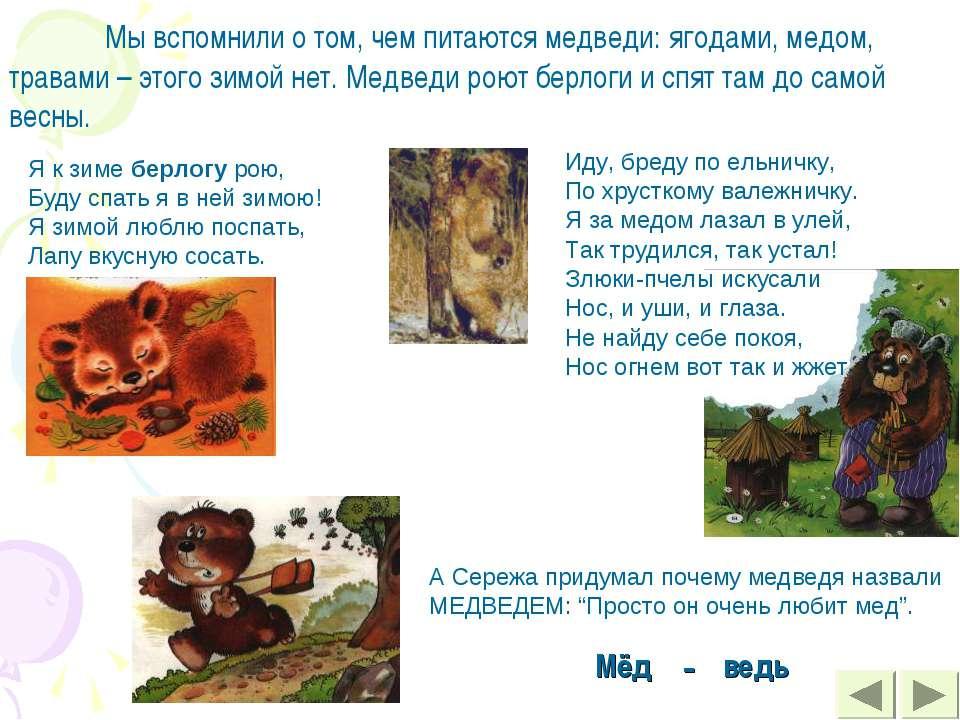 Мы вспомнили о том, чем питаются медведи: ягодами, медом, травами – этого зим...
