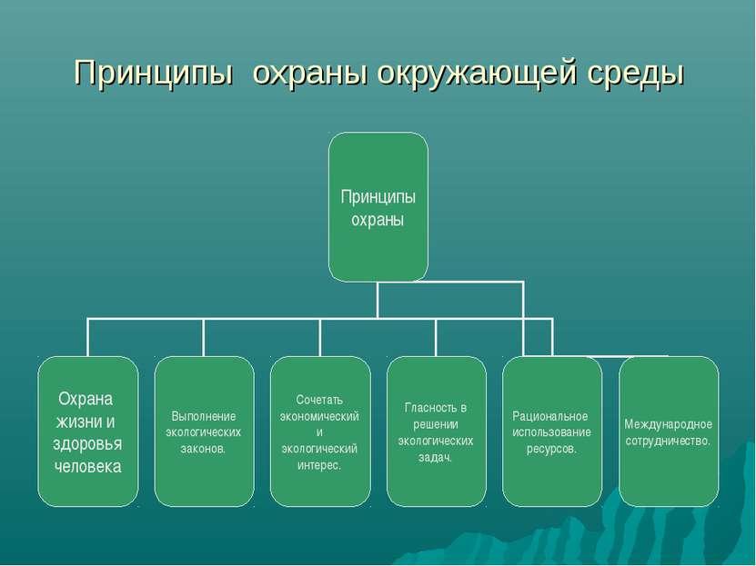 Принципы охраны окружающей среды