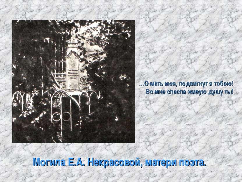 Могила Е.А. Некрасовой, матери поэта. …О мать моя, подвигнут я тобою! Во мне ...