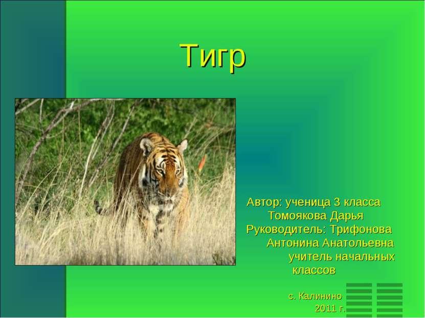 Тигр Автор: ученица 3 класса Томоякова Дарья Руководитель: Трифонова Антонина...