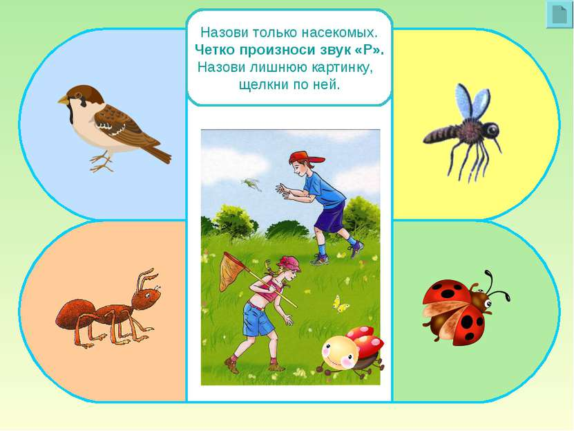 Назови только насекомых. Четко произноси звук «Р». Назови лишнюю картинку, ще...