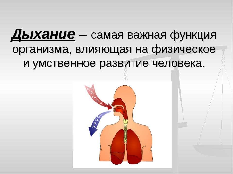 Презентации 8 дыхание