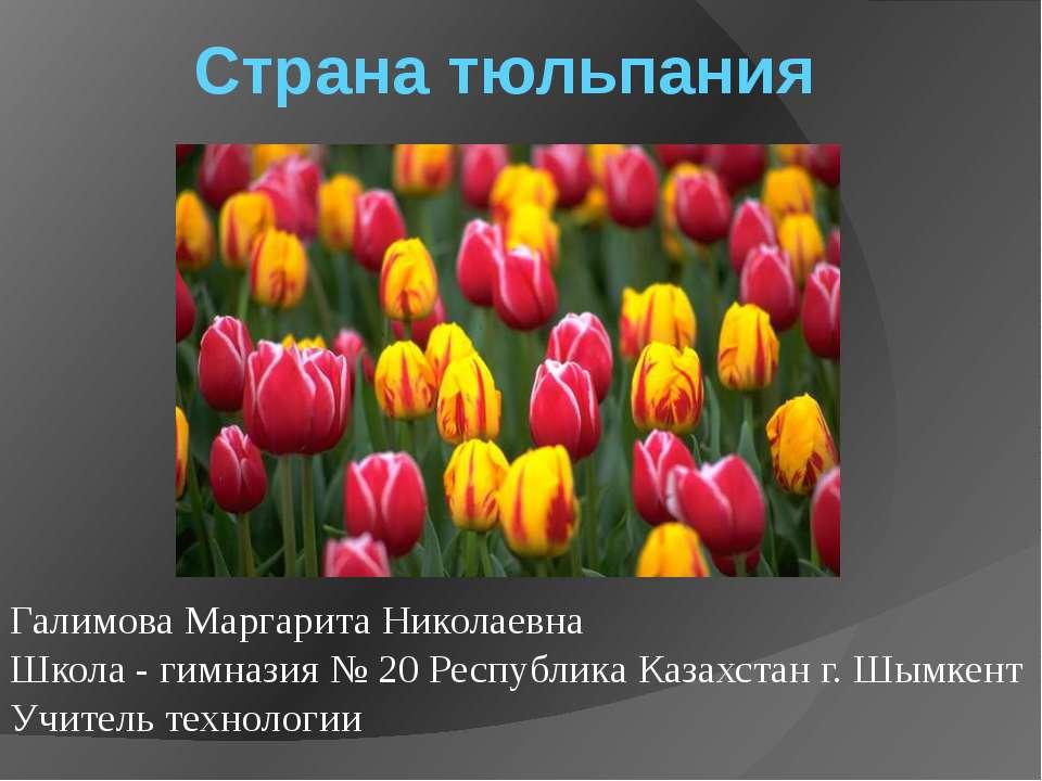 Страна тюльпания Галимова Маргарита Николаевна Школа - гимназия № 20 Республи...