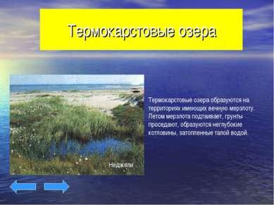 Термокарстовые озера Неджели
