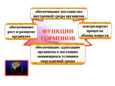 ФУНКЦИИ ГОРМОНОВ обеспечивают рост и развитие организма обеспечивают постоянс...