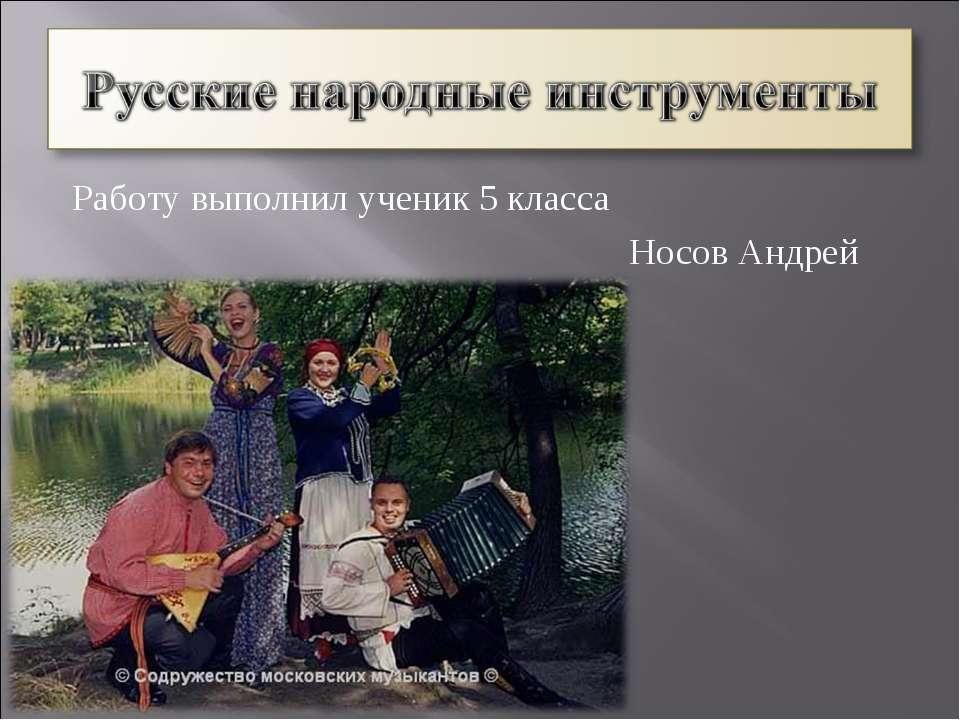 Работу выполнил ученик 5 класса Носов Андрей