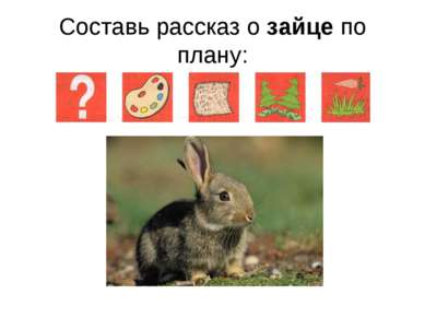 Составь рассказ о зайце по плану: