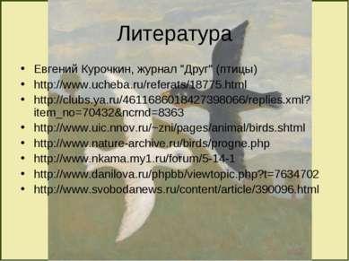 "Литература Евгений Курочкин, журнал ""Друг"" (птицы) http://www.ucheba.ru/refer..."