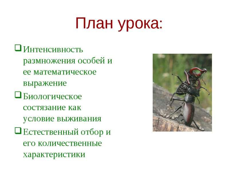 План урока: Интенсивность размножения особей и ее математическое выражение Би...