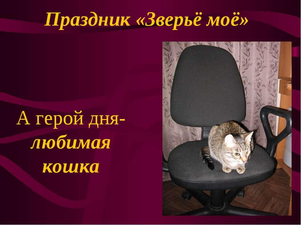 Праздник «Зверьё моё» А герой дня- любимая кошка