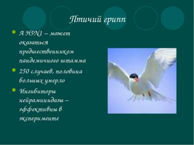 Птичий грипп А Н5N1 – может оказаться предшественником пандемичного штамма 25...