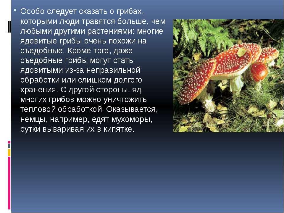 Особо следует сказать о грибах, которыми люди травятся больше, чем любыми дру...