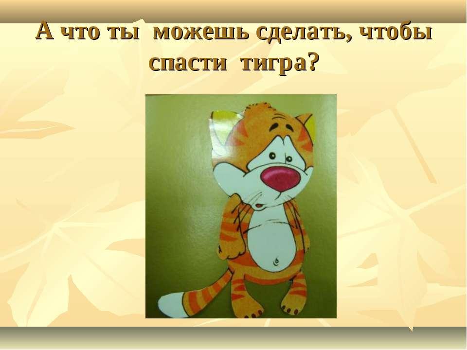 А что ты можешь сделать, чтобы спасти тигра?