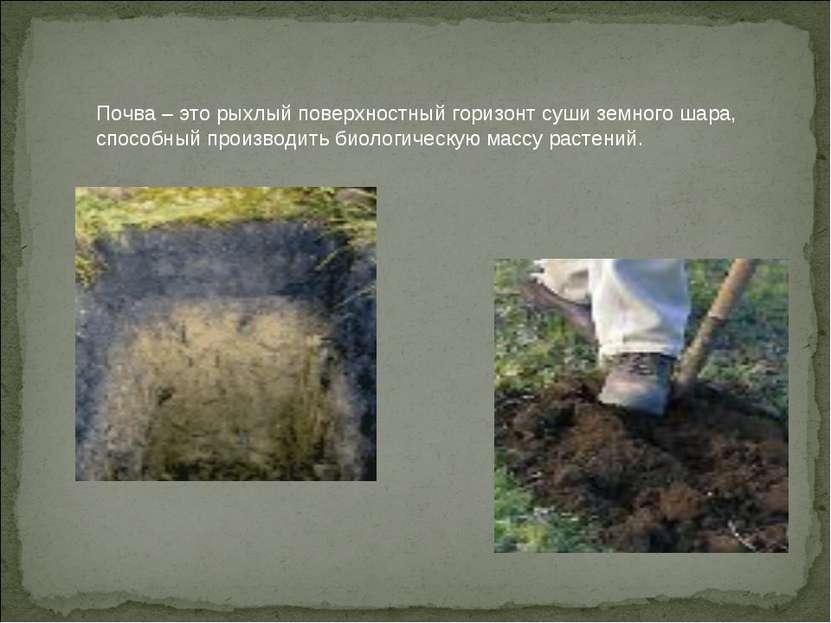Почва – это рыхлый поверхностный горизонт суши земного шара, способный произв...