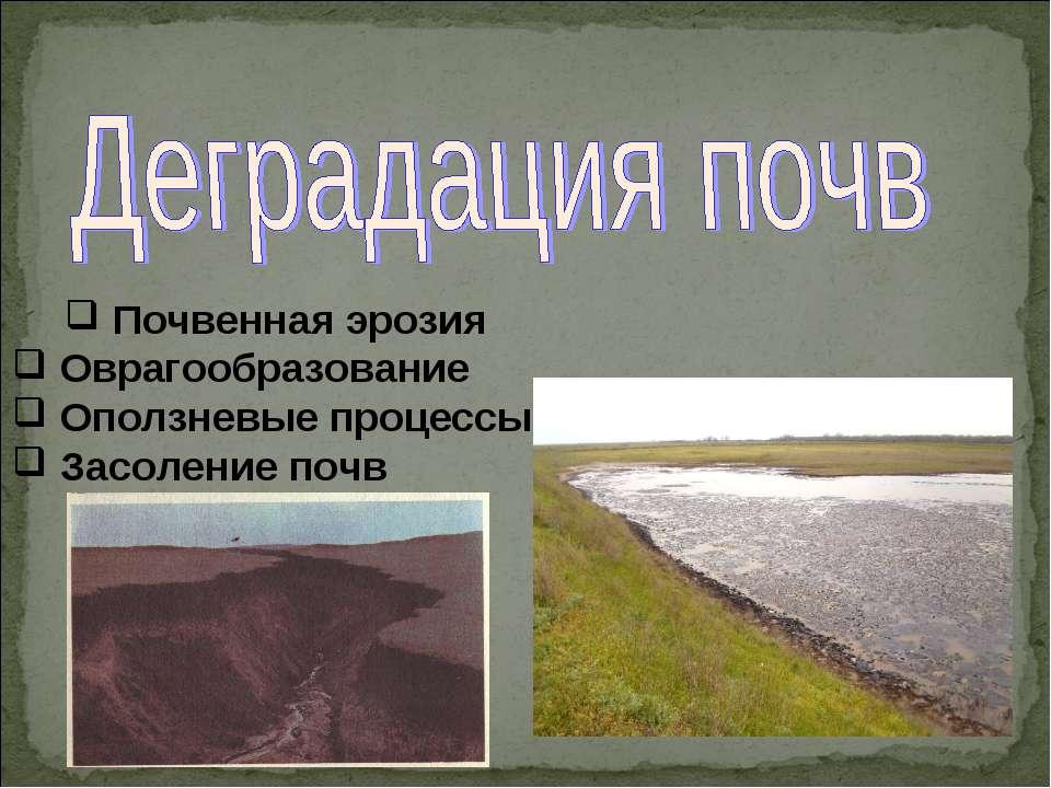 Почвенная эрозия Оврагообразование Оползневые процессы Засоление почв