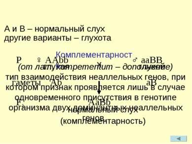 (от лат. kompementum – дополнение) тип взаимодействия неаллельных генов, при ...