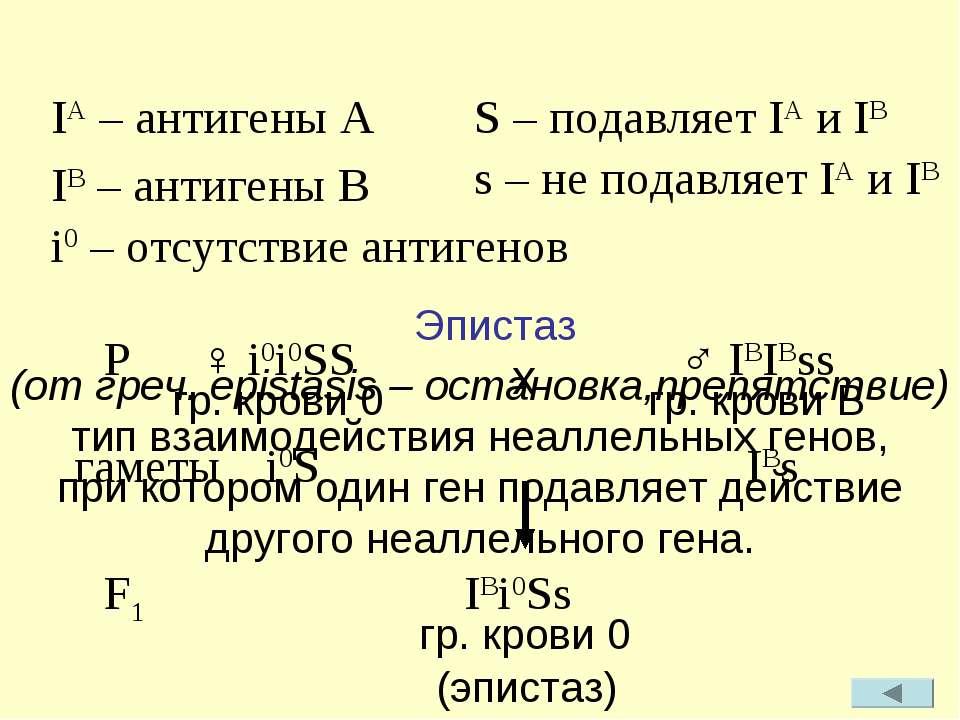 Эпистаз (от греч. epistasis – остановка,препятствие) тип взаимодействия неалл...