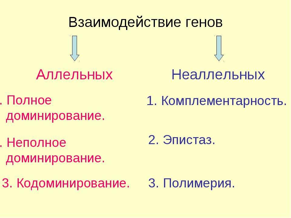 Взаимодействие генов