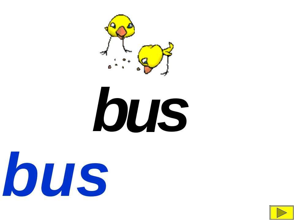 b s u bus