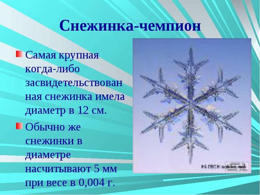 Снежинка-чемпион Самая крупная когда-либо засвидетельствованная снежинка имел...