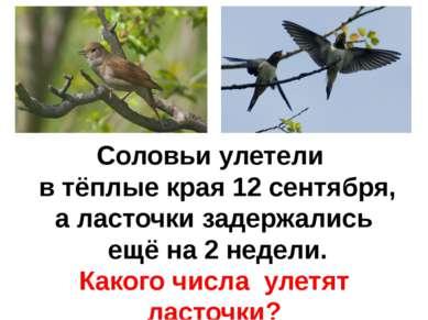 Соловьи улетели в тёплые края 12 сентября, а ласточки задержались ещё на 2 не...