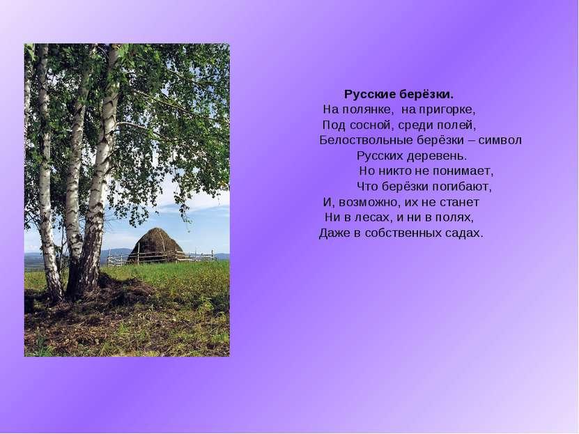 Русские берёзки. На полянке, на пригорке, Под сосной, среди полей, Белостволь...