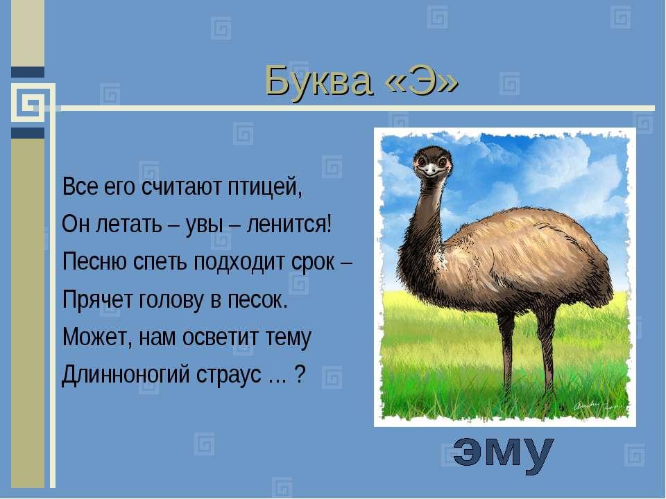 Буква «Э» Все его считают птицей, Он летать – увы – ленится! Песню спеть подх...