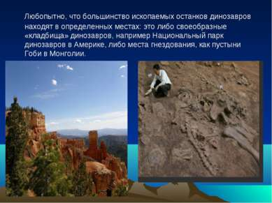 Любопытно, что большинство ископаемых останков динозавров находят в определен...