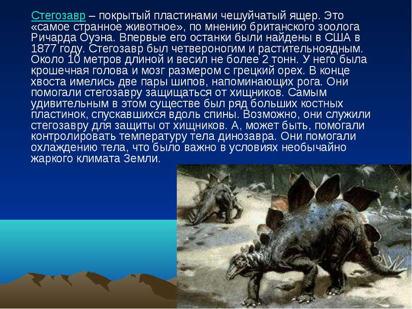 Стегозавр – покрытый пластинами чешуйчатый ящер. Это «самое странное животное...