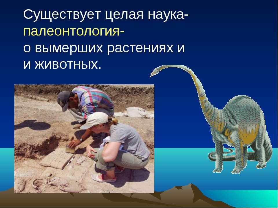 Существует целая наука- палеонтология- о вымерших растениях и и животных.