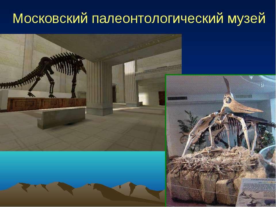 Московский палеонтологический музей
