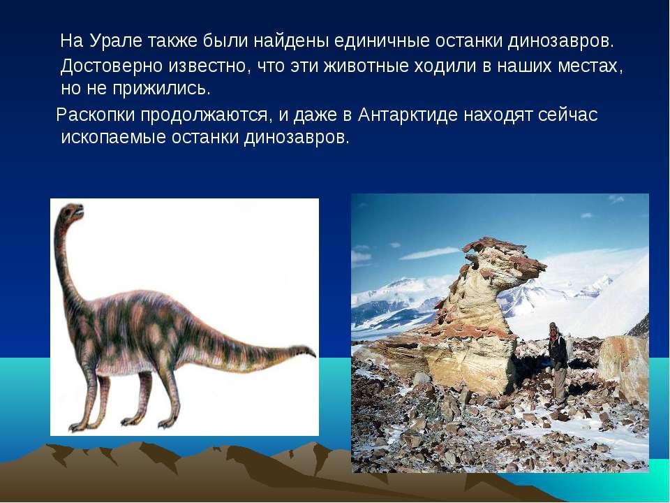 На Урале также были найдены единичные останки динозавров. Достоверно известно...