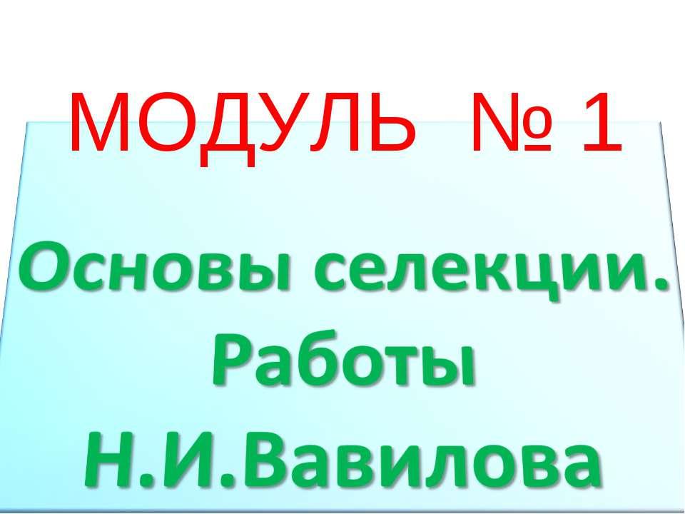 МОДУЛЬ № 1