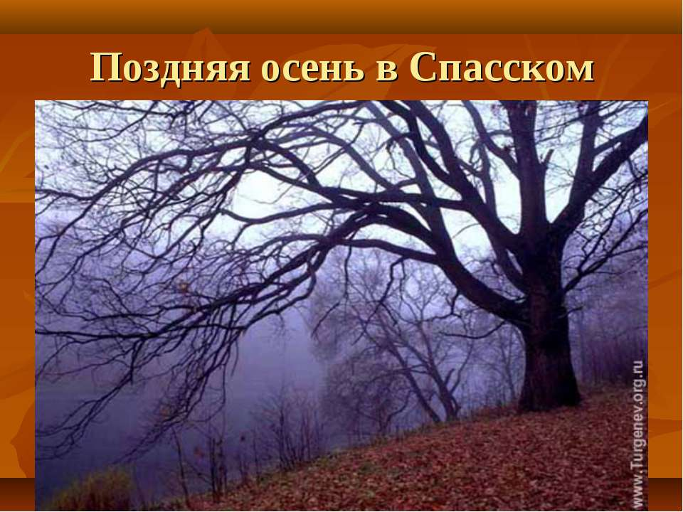 Поздняя осень в Спасском