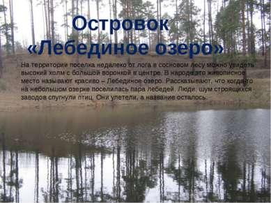 Островок «Лебединое озеро» На территории поселка недалеко от лога в сосновом ...