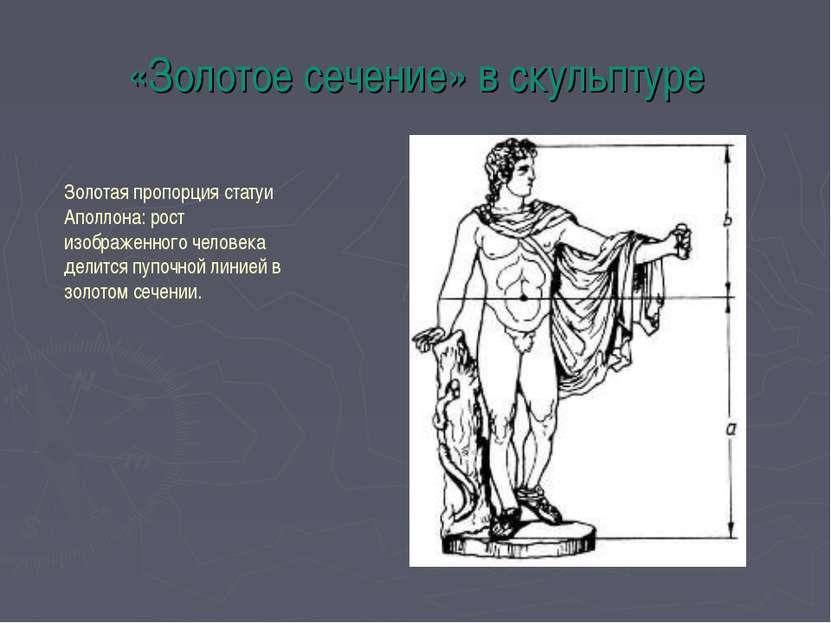 «Золотое сечение» в скульптуре Золотая пропорция статуи Аполлона: рост изобра...