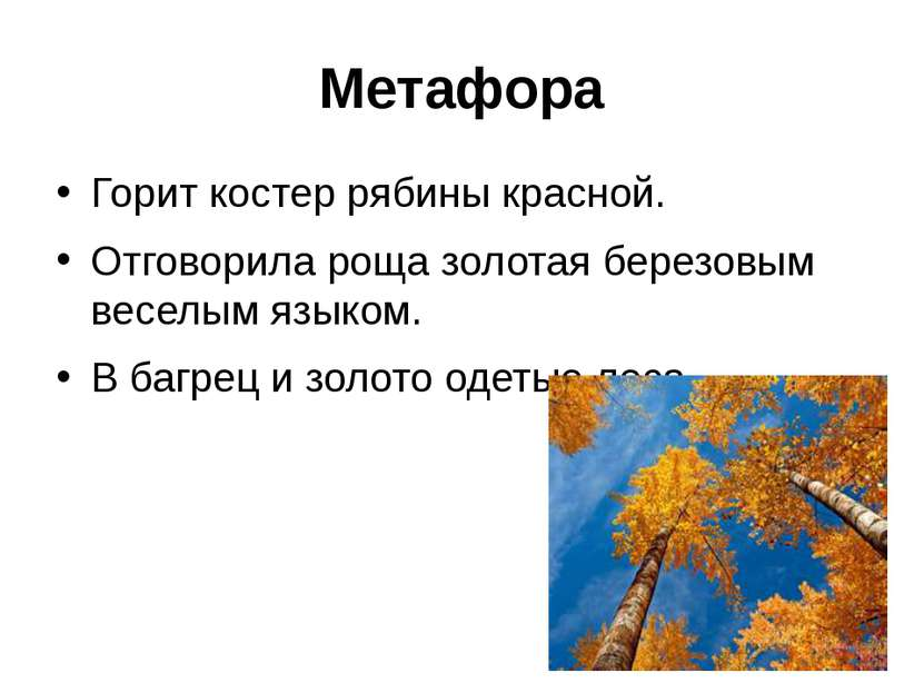 Метафора Горит костер рябины красной. Отговорила роща золотая березовым весел...