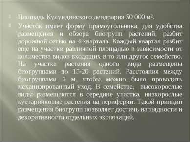 Площадь Кулундинского дендрария 50 000 м². Участок имеет форму прямоугольника...