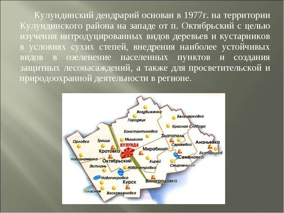 Кулундинский дендрарий основан в 1977г. на территории Кулундинского района на...
