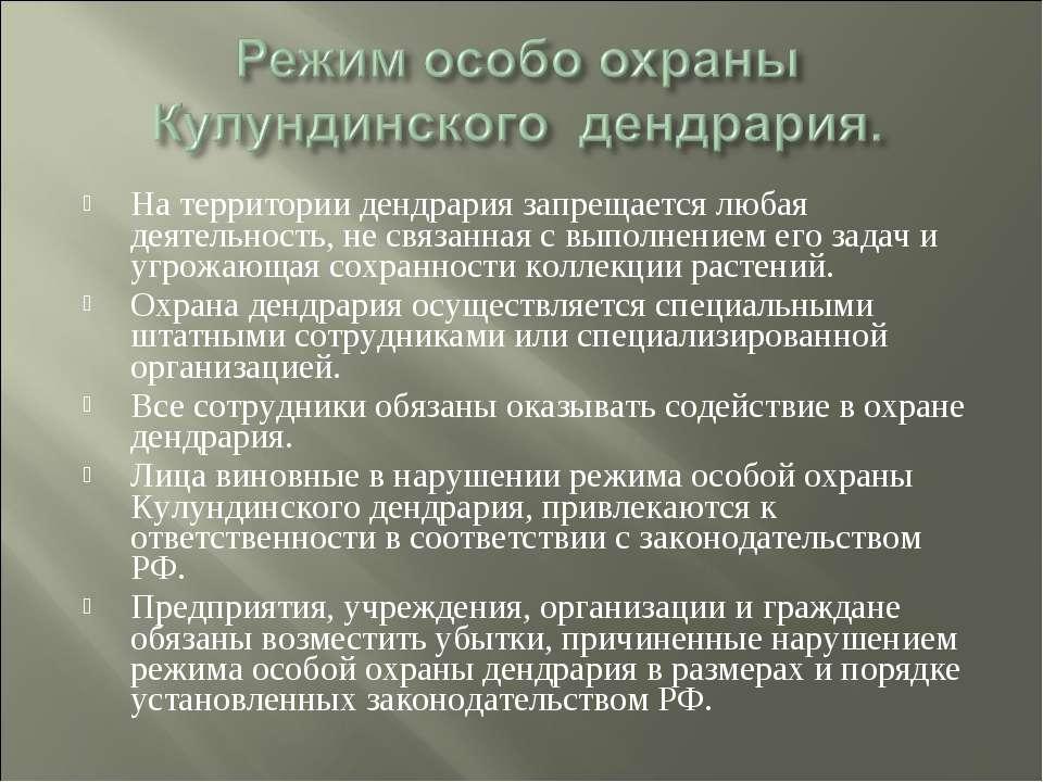 На территории дендрария запрещается любая деятельность, не связанная с выполн...