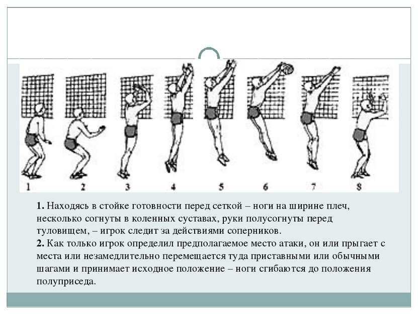1. Находясь в стойке готовности перед сеткой– ноги на ширине плеч, несколько...