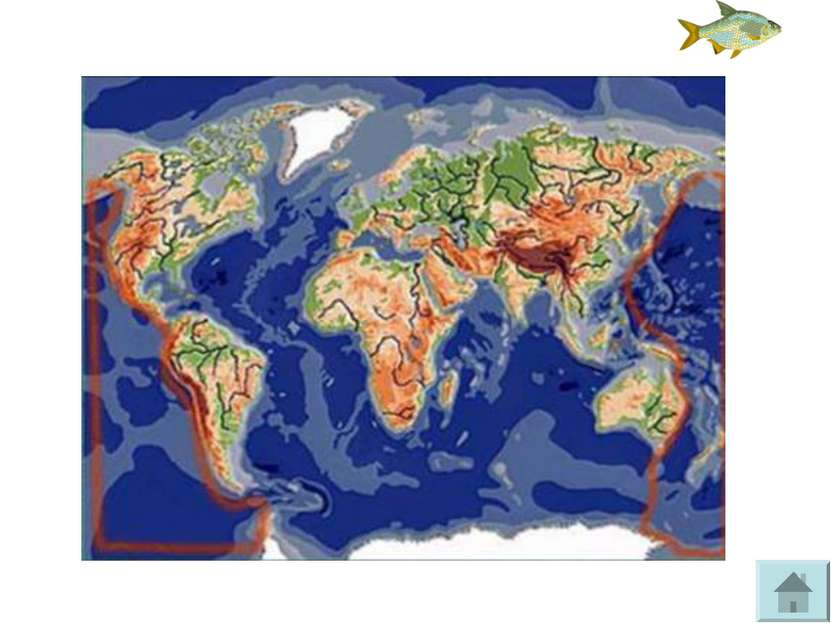 Назовите и покажите материки, омываемые океаном Тихий океан.