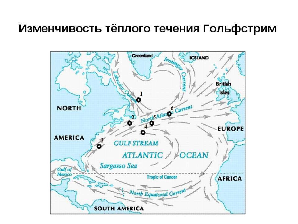 Изменчивость тёплого течения Гольфстрим
