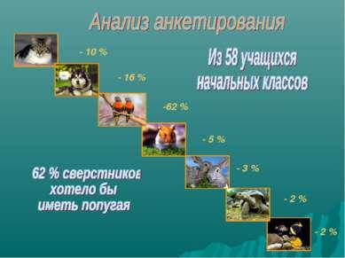 Черепах– 8% Кроликов – 3% - 10 % - 16 % -62 % - 5 % - 3 % - 2 % - 2 %